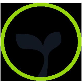 Biotree Urns | Biotree Urn Step 3