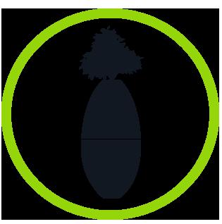 Biotree Urns | Biotree Urn Step 4