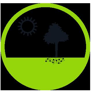 Biotree Urns | Biotree Urn Step 5